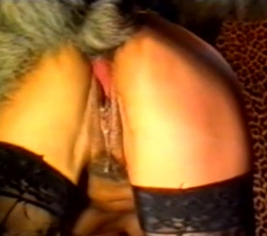 Dog violates a chick in black stockings
